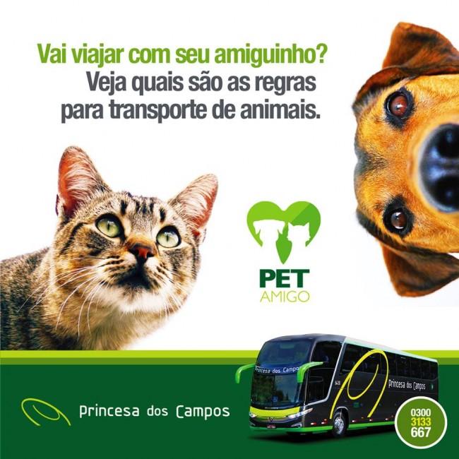 Transporte de Animais na Princesa dos Campos